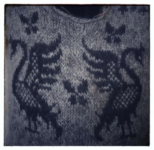 Detail of the Signum sweater showing two swans